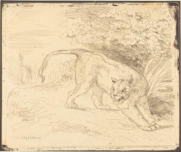 Tigre en arrêt