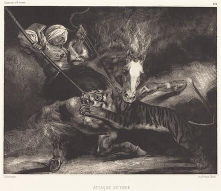 Attaque du tigre