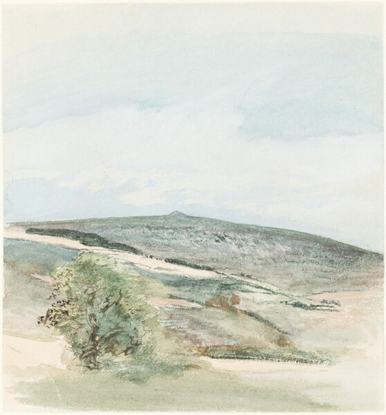 A Heath in Sussex