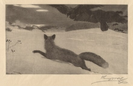 Winter, the Fox Hunt
