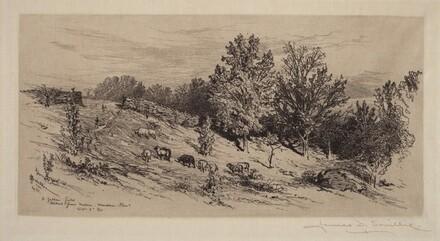 A Fallow Field