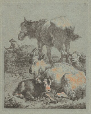 Horse, Ram, Goat with Kid; In the Distance a Shepherd with Flock