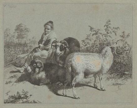 Seated Shepherdess with Three Rams