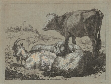 Standing Ox, Two Sheep, and a Goat