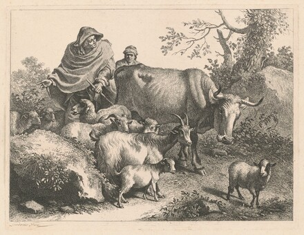 Shepherd Wearing a Cape Driving a Flock