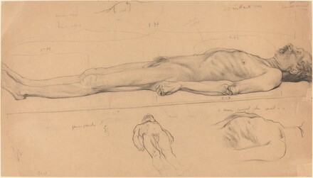 The Corpse (Study for The Dead Christ)