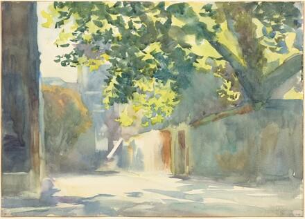 Sunlit Wall Under a Tree