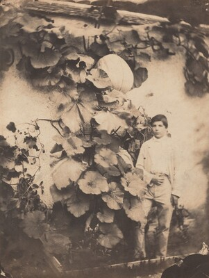 Boy with a Pumpkin Vine