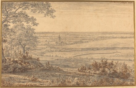 Extensive Landscape Seen from the Edge of a Forest