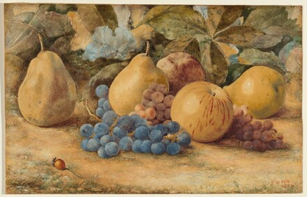 Still Life of Fruit: Apples, Pears, and Grapes on Ground