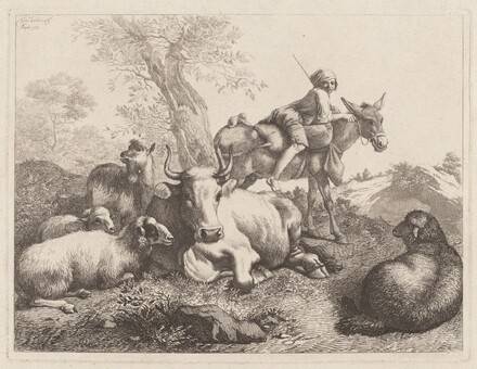 Boy on a Donkey Watching over a Group of Animals