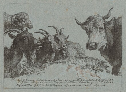Study of Heads: Three Goats, an Ox, and a Ram