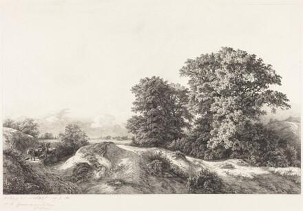 Oaks in the Vaux de Cernay
