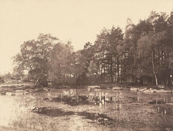 Marsh at Piat (Belle-Croix Plateau)