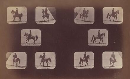 Studies of Foreshortenings. Horses. Walking. Mahomet. Nos. 119-120