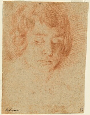 Head of a Boy (Gennaro Falcone?)
