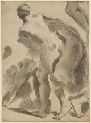 Studies of Female Nudes