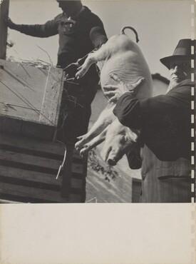 40 Fotos, page 9