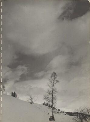 40 Fotos p.8