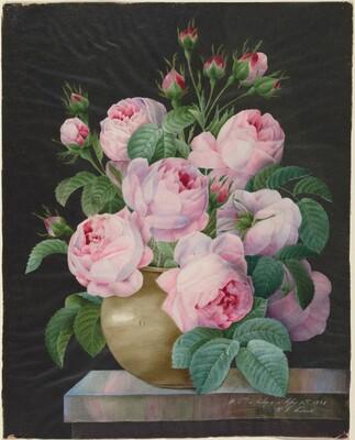 Pink Roses in a Vase