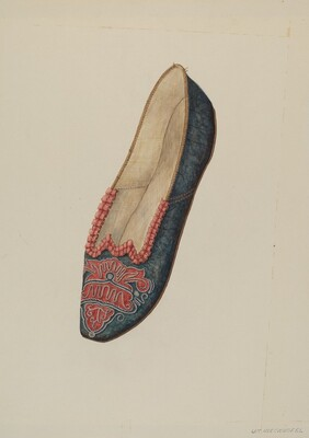 Evening Slipper