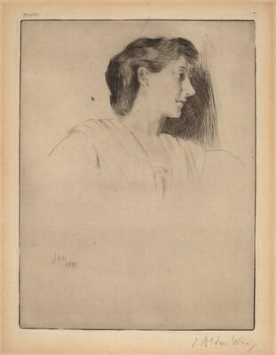 Profile Head of a Woman