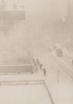 image: Snapshot—From My Window, New York
