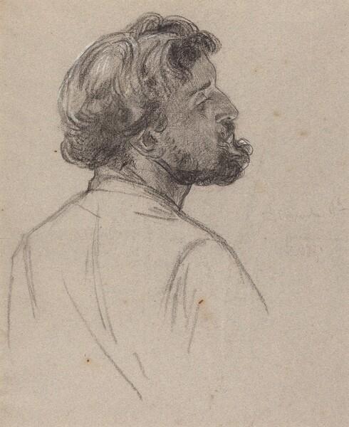 Head of a Bearded Gentleman