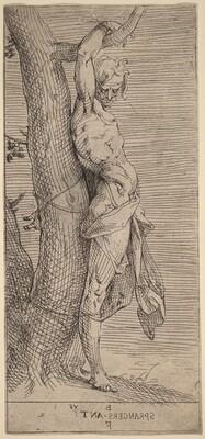 St. Sebastian, Bound to a Tree