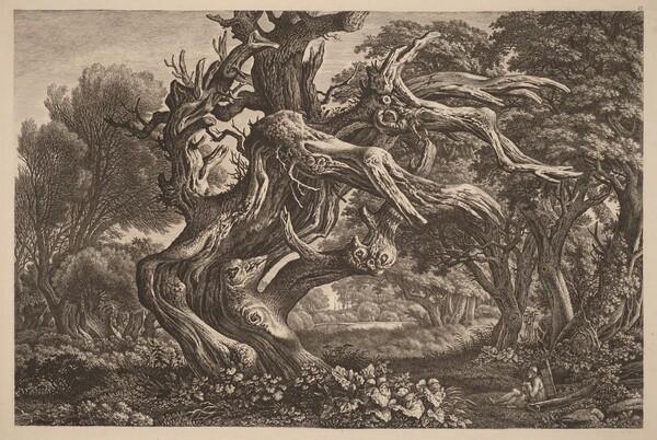 A Dead Oak Tree