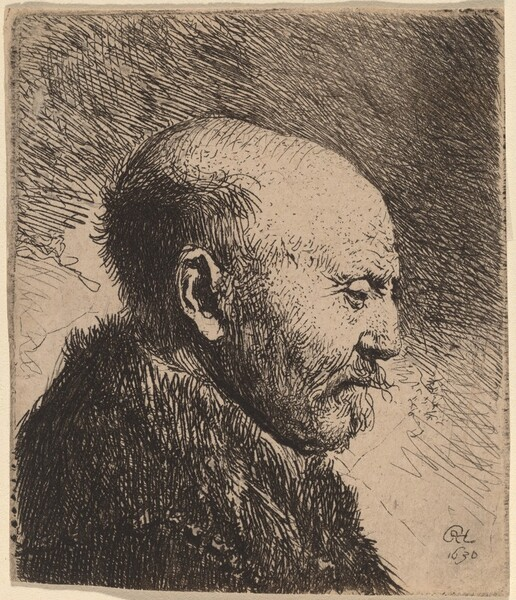 A Bald Man in Profile (The Artist's Father?)