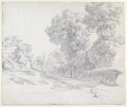 Oaks along the Appian Way near Albano