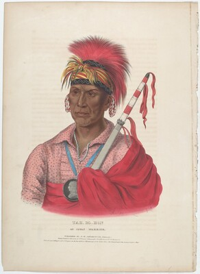 Tah-Ro-Hon, An Ioway Warrior