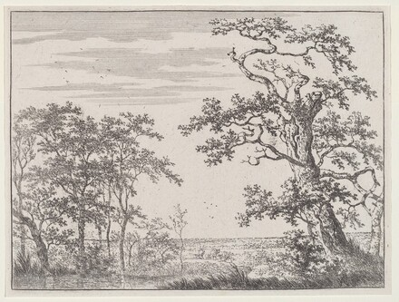 Landscape with a Stream and an Ancient Tree