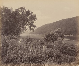 The Susquehanna At Wyalusing
