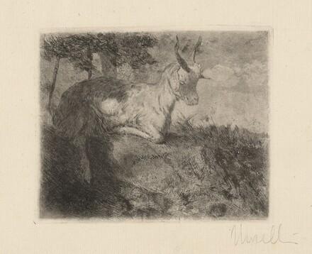 The Little Goat (La capretta)