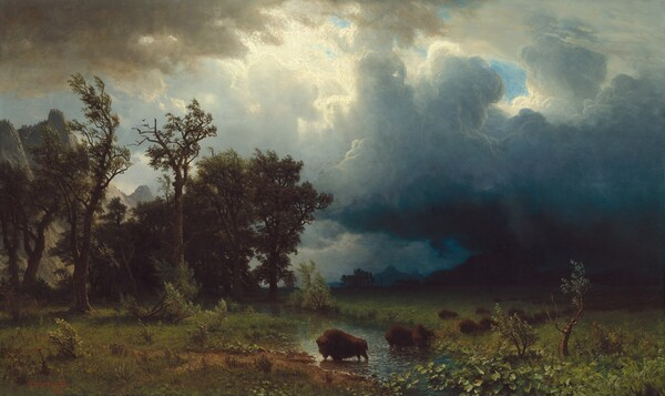 Buffalo Trail: The Impending Storm