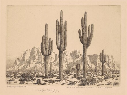 Desert Sentinels, Apache Trail, Arizona