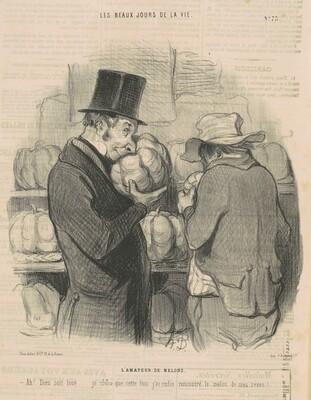 L'amateur de melons