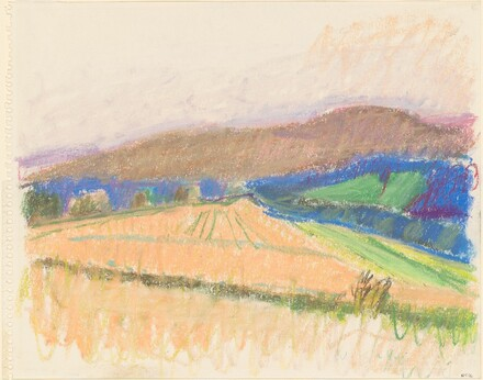 Vermont Cornfield