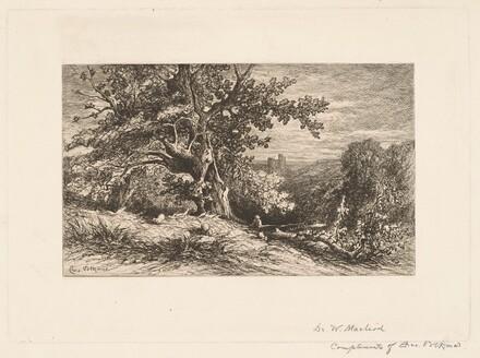 Landscape with Fallen Tree