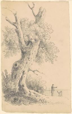 Tree Near the Shore