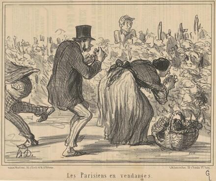 Les parisiens en vendages