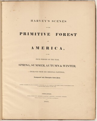 Harvey's Scenes of the Primitive Forest