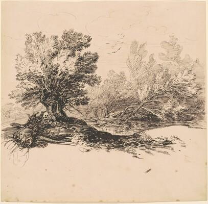 A Pollard Willow by a Stream