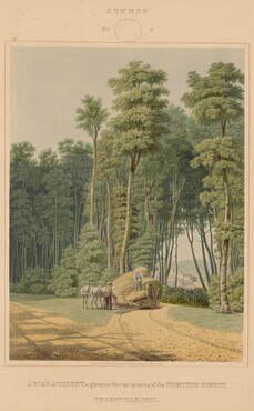 Summer--A  Road Accident. A glimpse thro' an opening of the Primitive Forest. Thornville, Ohio