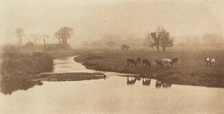 Sheep on the Marshes [Landscape with Cattle]