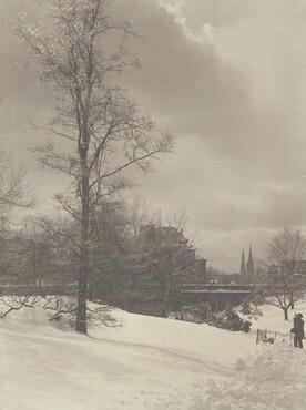 image: Winter, Central Park