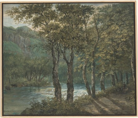 Sunlight Filtering through Trees along the River Sihl