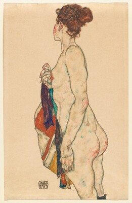 Standing Nude with a Patterned Robe